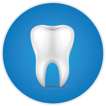 Endodontics Tooth